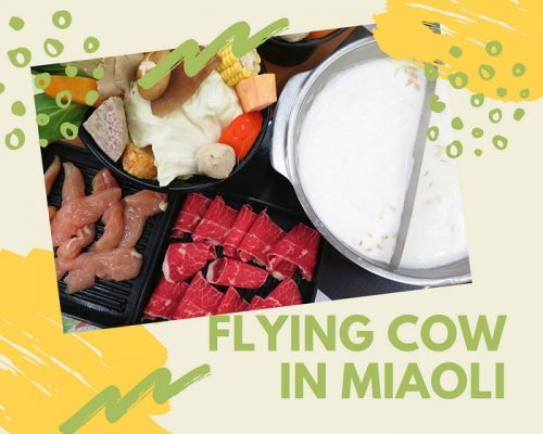 FLYING COW-POT