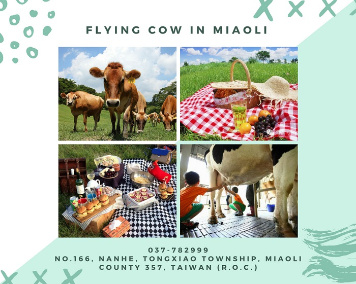 flying cow (1)