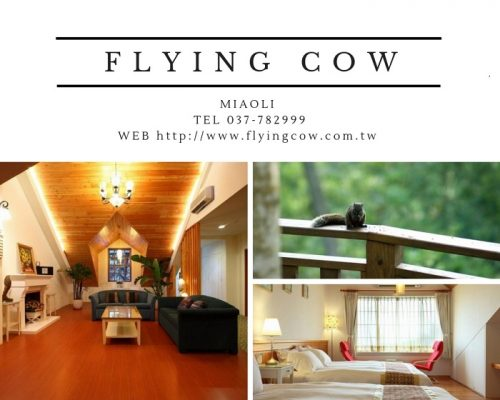 FLYING COW ACC